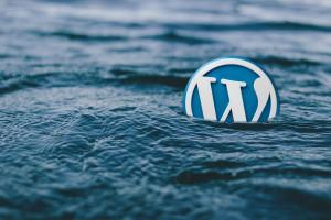 WordPress-Logo geht unter (Bild: kpgolfpro, pixabay.com, CC0-Lizenz)