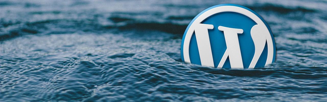 WordPress Logo geht im Wasser unter